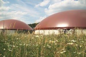 Biogasanlage mit Blumenwiese