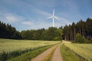 Windkraft_Neudorf I_Weg_2013_1000px