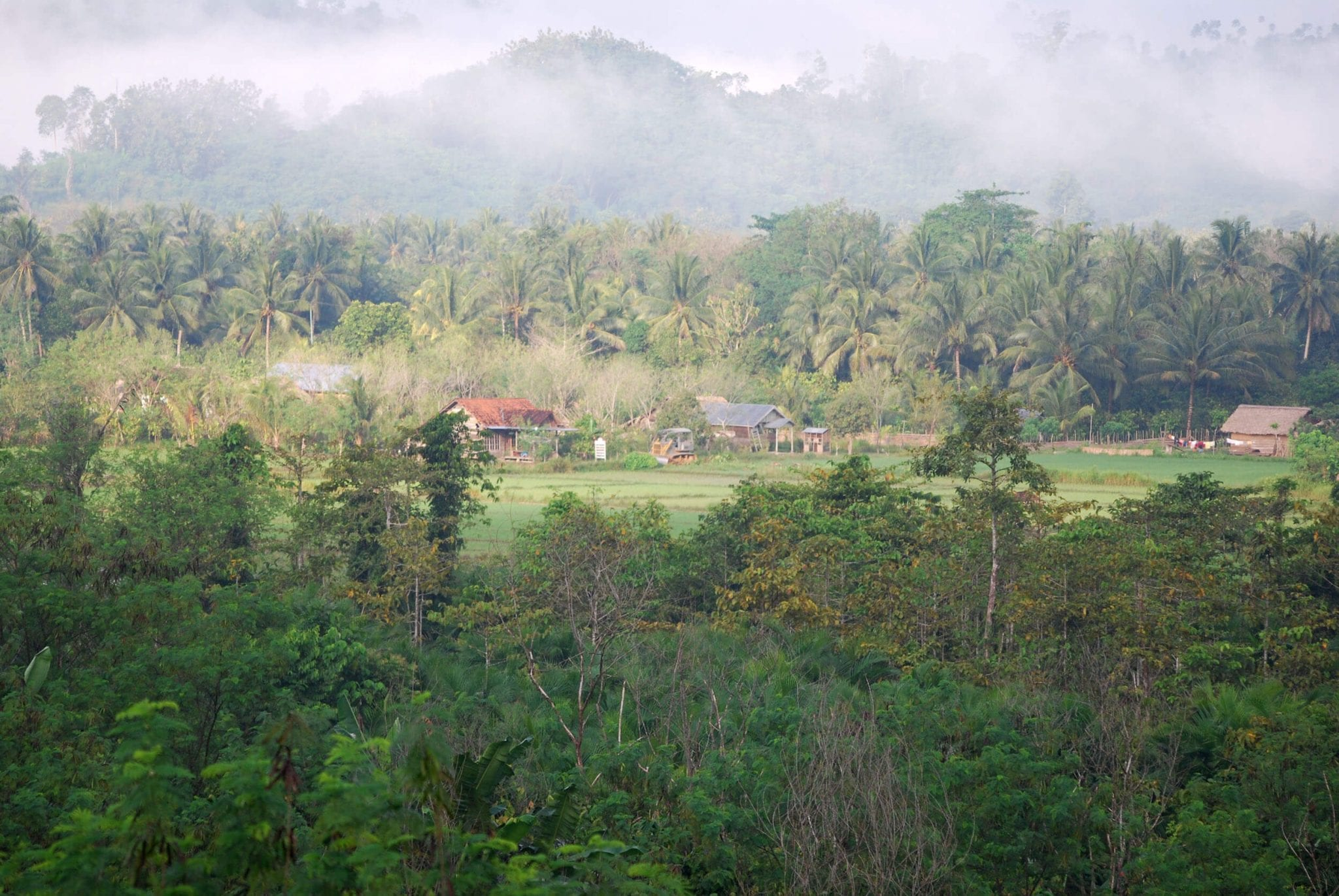 Makartijaya village/ Dorf mitten im Wald - Photo by Burung Indonesia