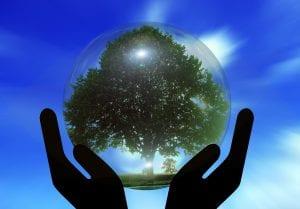 Earth Overshoot Day. Foto: Pixabay