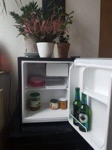 Ein Mini-Kühlschrank mit 42 Litern und einem Verbrauch von max. 84 kWh/ Jahr. Foto: privat.