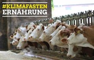 Klimafasten beim Essen: Je sorgsamer wir mit Lebensmitteln umgehen, desto besser geht es auch dem Klima. Foto:www.lisa-badum.de