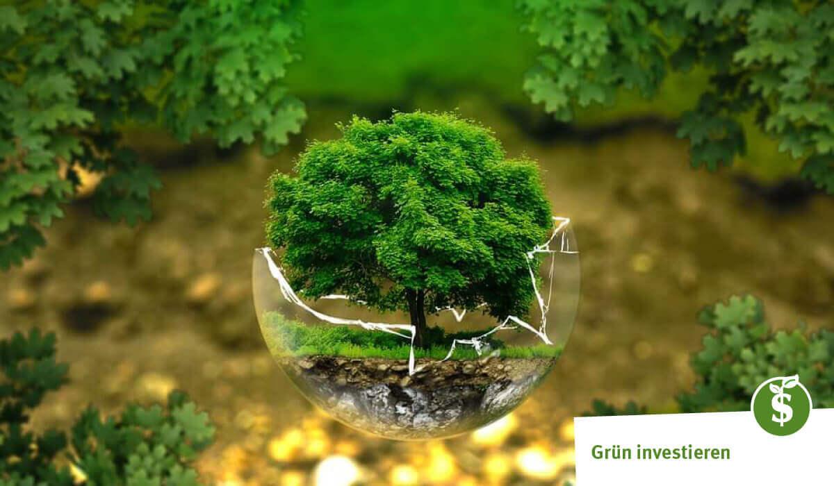 Darum haben Banken im Kampf gegen den Klimawandel eine Schlüsselfunktion Foto: Pixabay