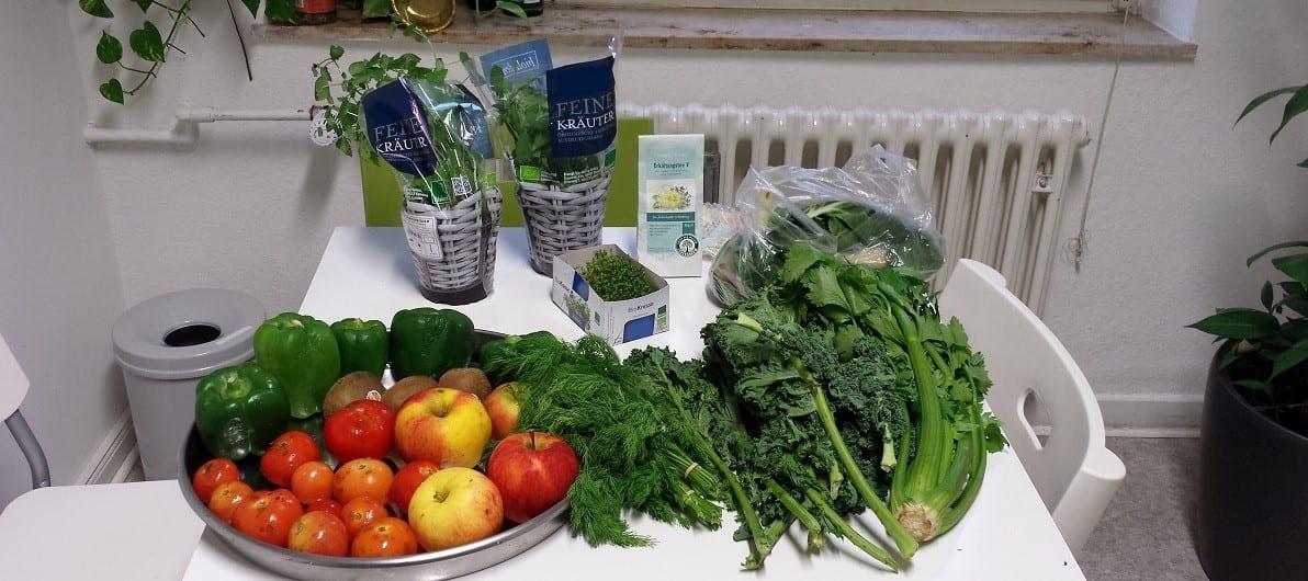 Gerettete Lebensmittel Foodsharing