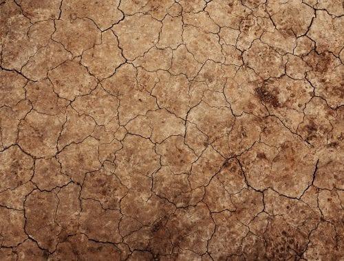 Dürre in Chile - und beim Weltklimagipfel