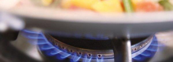 NATURSTROM feiert 20.000 Biogas-Kunden